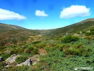 Hayedo Montejo-Cuerda Pinilla; viajes y excursiones viajes septiembre senderistas
